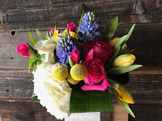 Send a Smile - This Week's Brightest, Best Blooms
