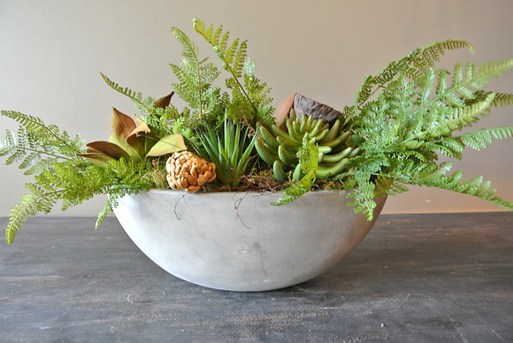 Succulents and Plants in Crescent Bowl