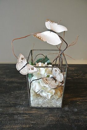 White Butterflies & Artificial Terrarium