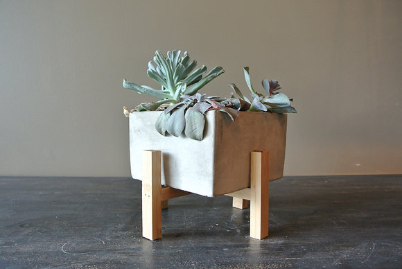 Three Succulents in Square Pot with Small Stand