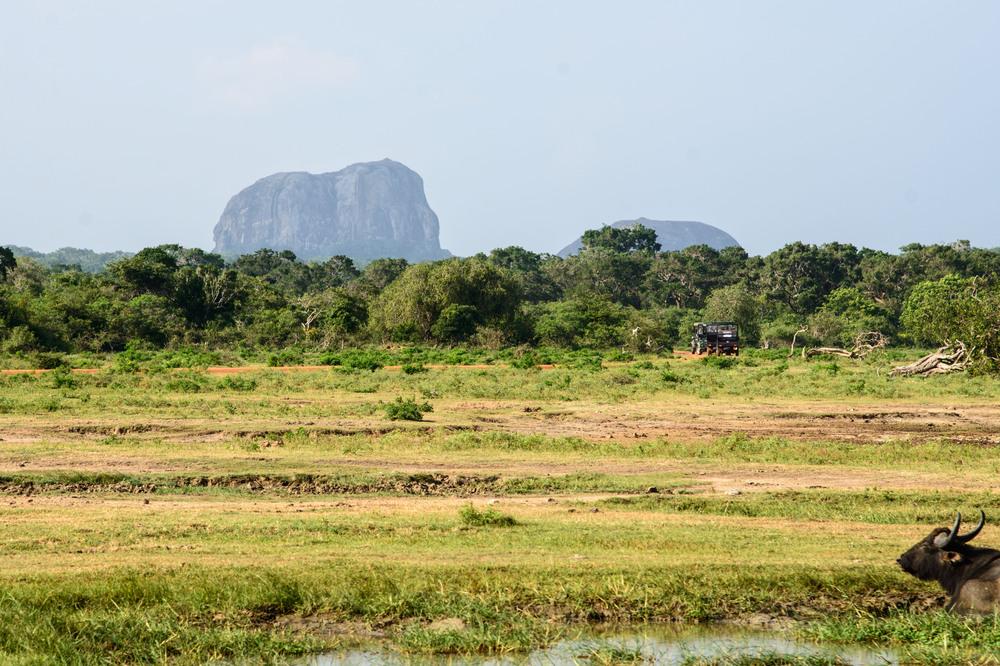yale nationalpark 2