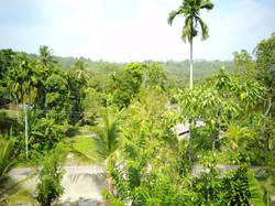 COCOSTE Area