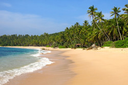 Tangalle 2