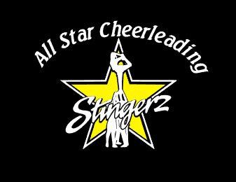 Stingerz All Star Cheerleading Decal