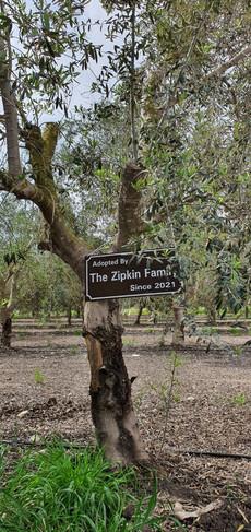Zipkin family.jpeg