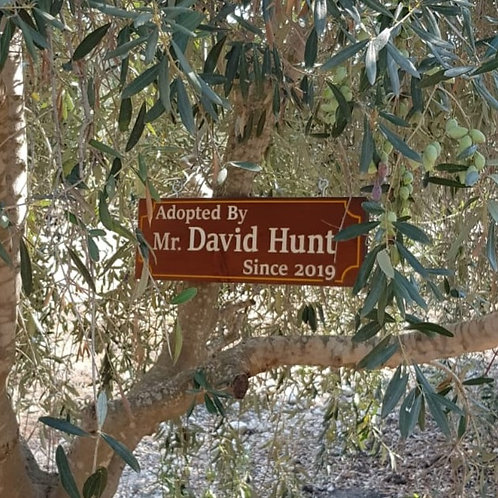 Wooden Sign on your tree