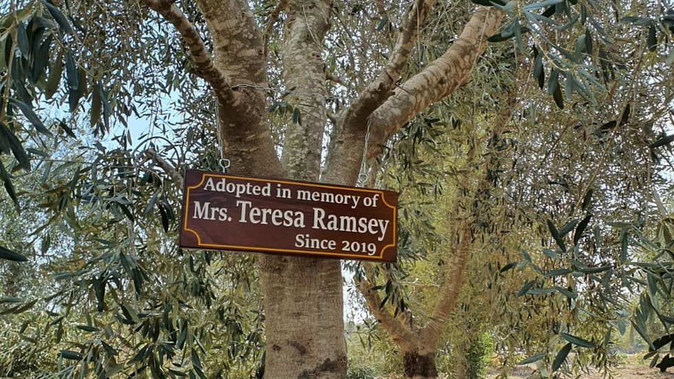 Adopt In Memory With Wooden Sign