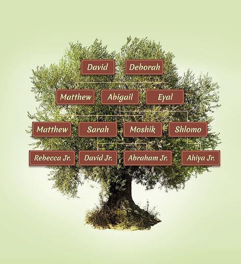 Tree-img@2x.jpg