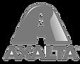 AXALTA-BYN.png
