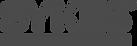 2000px-Sykes_Enterprises_Logo-BYN.png