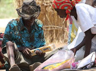 mozambique-armed-violence-assistance-aff