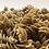 Thumbnail: Nün Seaweed & Chickpea Fusilli Pasta - Gluten Free - Vegan - 8 units pack