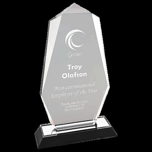 Octagon Impress Acrylics