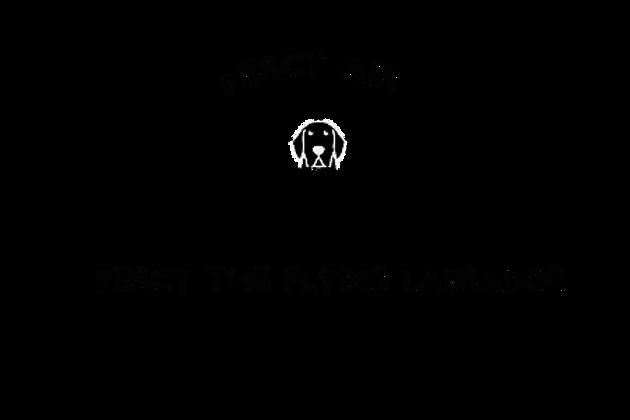 Percy Air T-Shirt. Percy The LAbrador