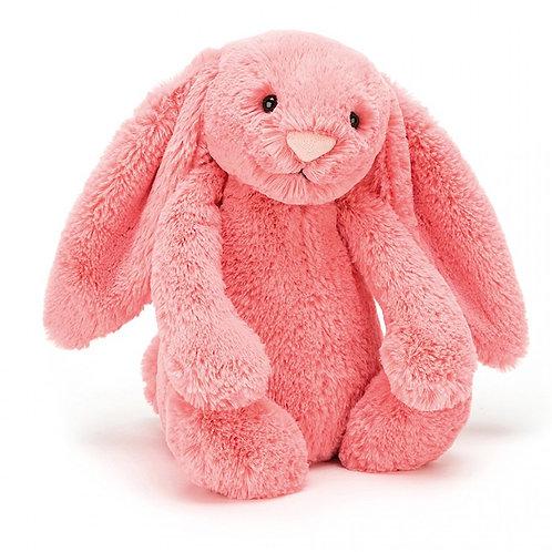 Bashful Coral Bunny 17cm