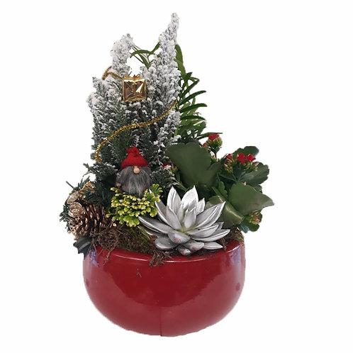 Bosque Ceramica Plantas Navidad