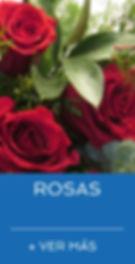 INICIO ROSAS.jpg