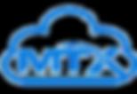 mtx-300x207.png