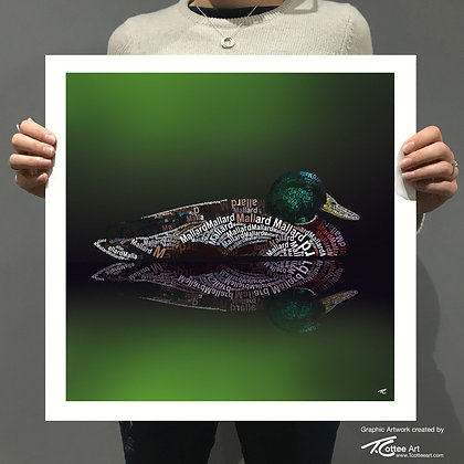 Reflecting Duck Giclee Print