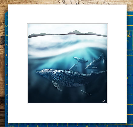 Coastal Dolphins Mounted Giclee Print