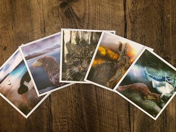 Wild Series 4 x Greetings Cards