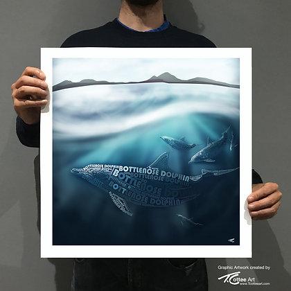 Coastal Dolphin Giclee Print