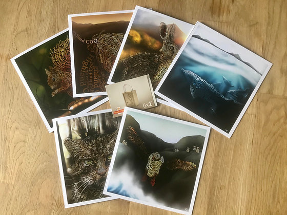 6x Greetings Card & 6x 1st Class Stamps £16.95