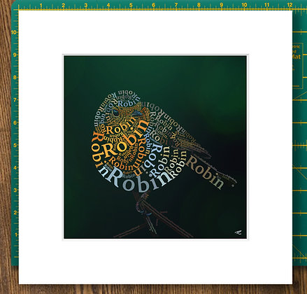Round Robin Mounted Giclee Print