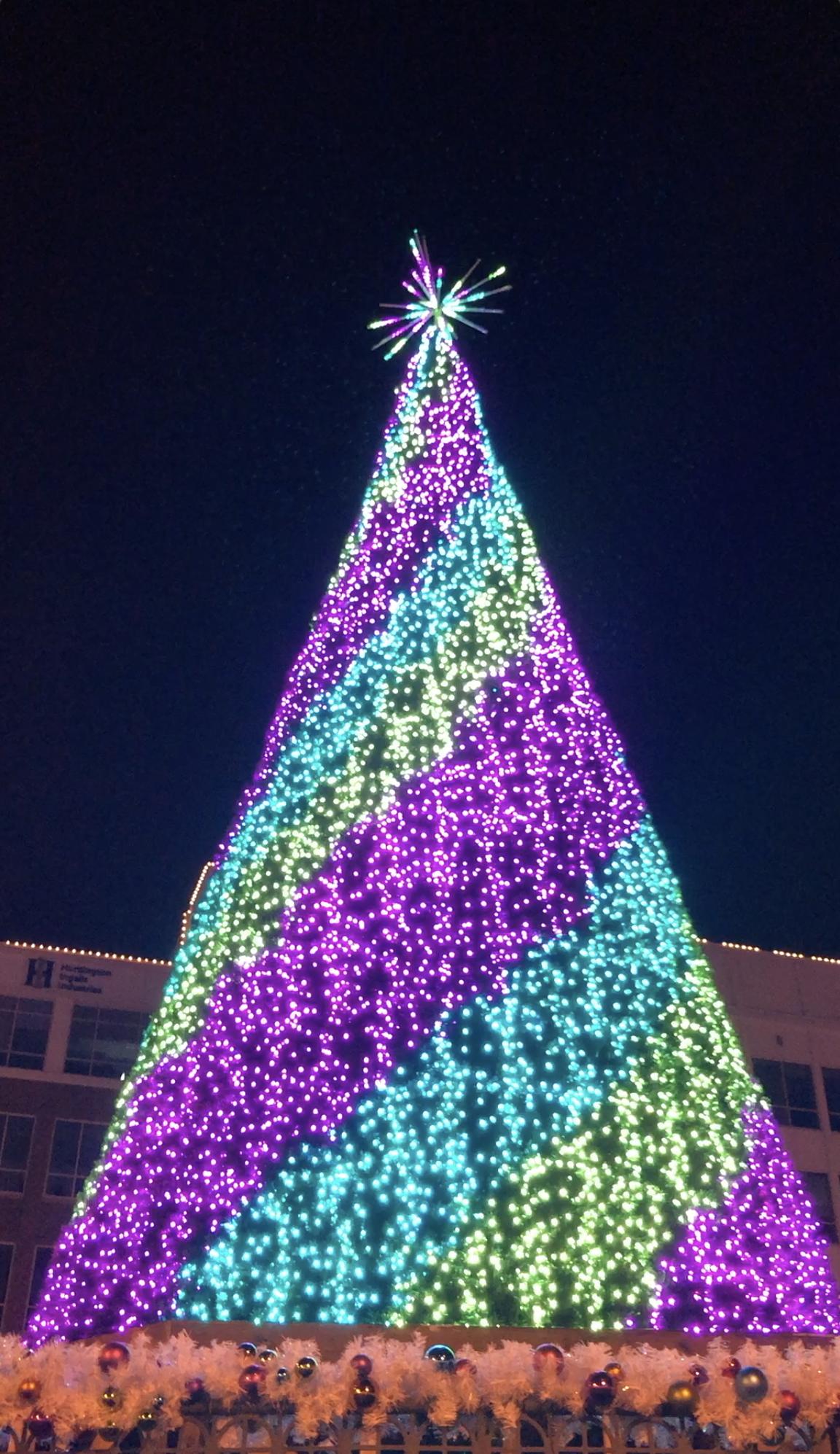 Newport News Holiday Lights