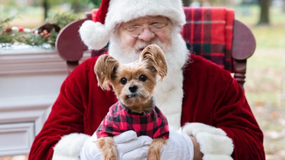 Santa Photos 2021