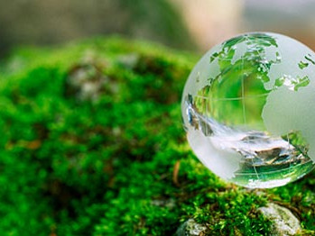 What does the future of Eco hold?