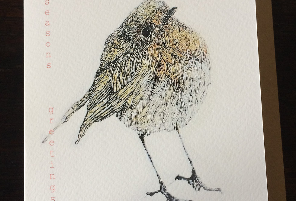 Robin Redbreast- pen and ink design by Robert Askew