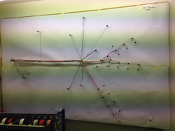 wiring loom in construction raychem