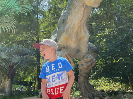 Dinopark a Zoo Vyškov
