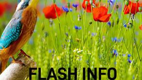 Flash info : Mai 2021