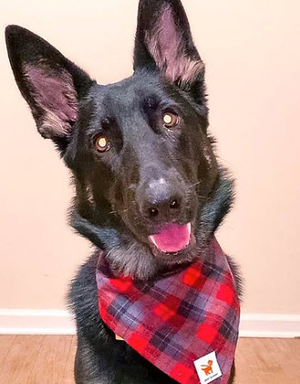 Red/Grey/Black Plaid Flannel Bandana