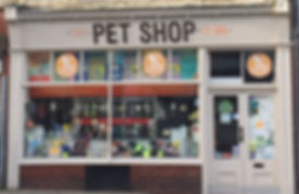 A-man-goes-into-a-pet-shop-and-.jpg
