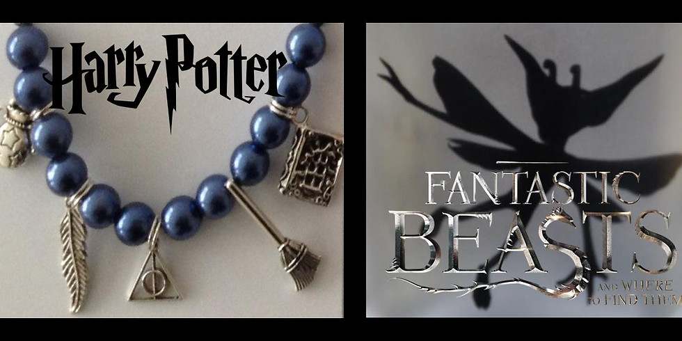 Fantastic Beasts Charms and Creature Workshop