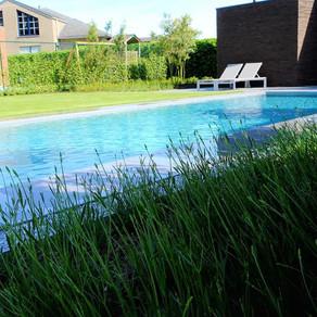 Waar kun je het best je zwembad plaatsen?
