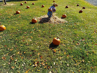 patch with pumpkin but guy.jpg