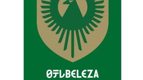 日テレ・東京ヴェルディベレーザ2021シーズン応援パートナーになりました
