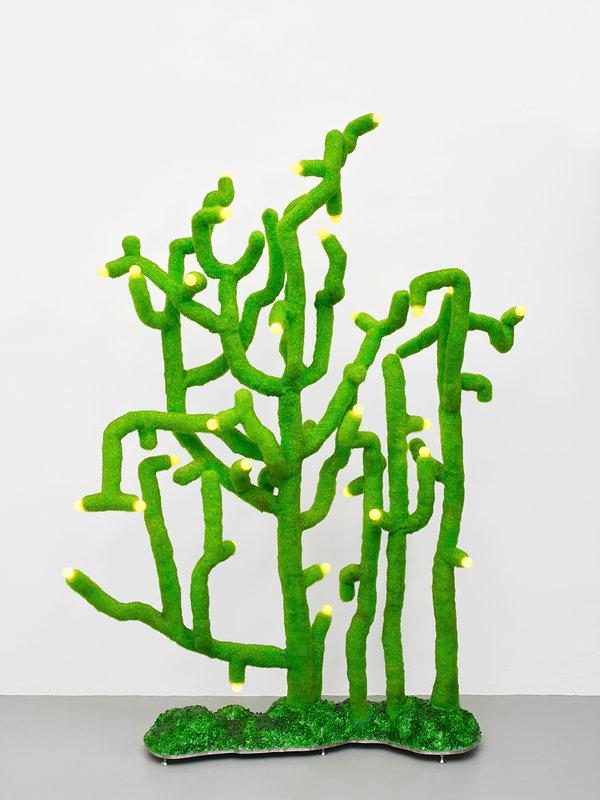 Fruiting Desert Lamp.jpg