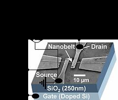NanoFET1.png
