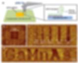 FBD433EA-E246-45C6-AB49-785B4BF58CDE.png