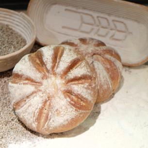 pane al pomodorro