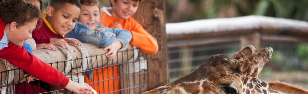Irvine Zoo