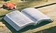 bible fall.PNG