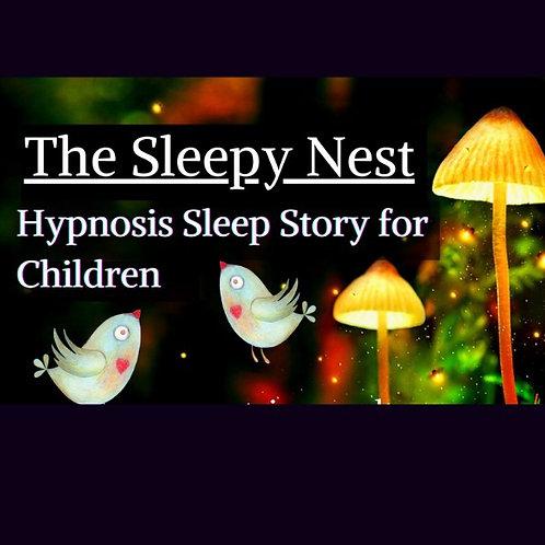 Children's Hypnosis Sleep Story - The Sleepy Bird's Nest
