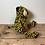 Thumbnail: Katy Leopard