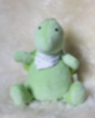 tortoise_retouch.jpg